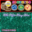 SNAZAROO FACE PAINT GLITTER GEL TURQUOISE 12ML TUB